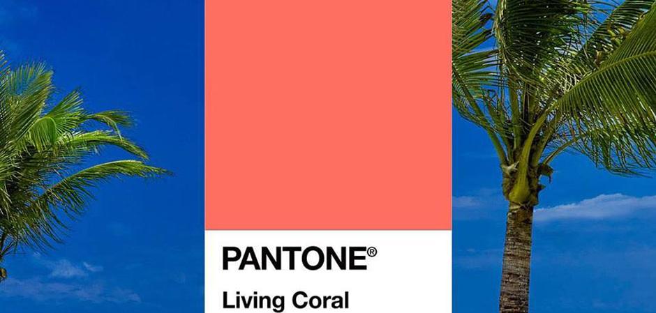 Главный цвет 2019 года по версии PANTONE